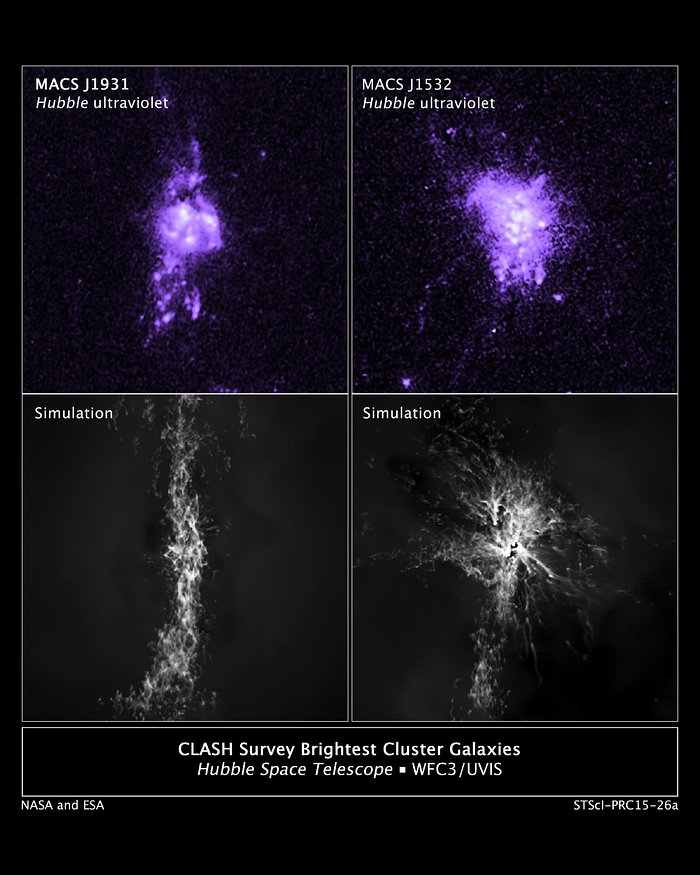 CLASH Survey Brightest Cluster Galaxies and Simulations