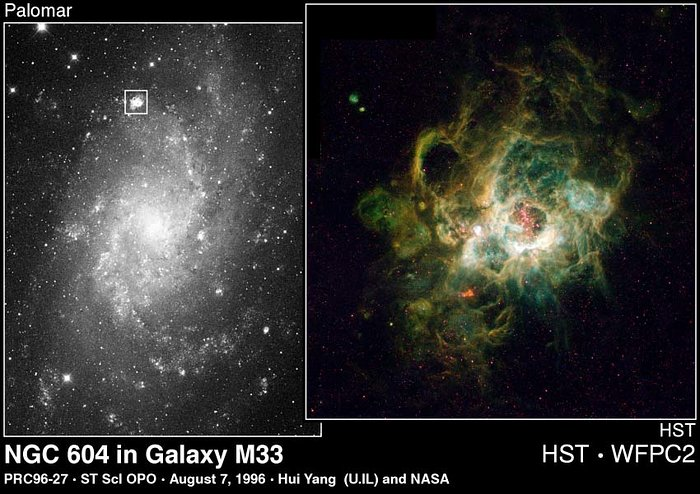 NGC 604 in Galaxy M 33