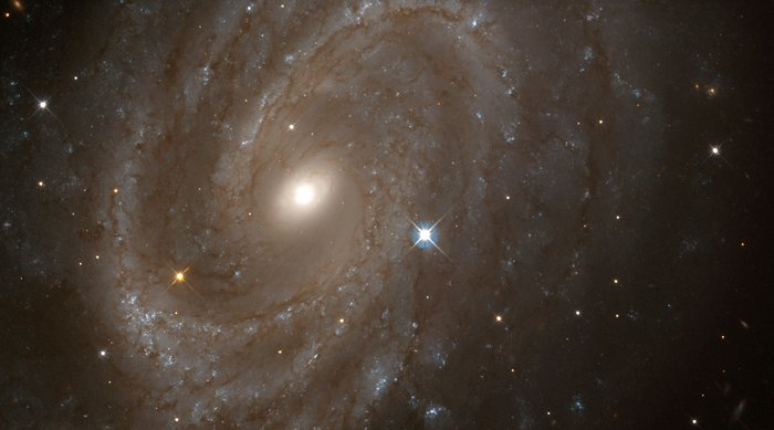 Hubble finds variable stars in distant spiral galaxy