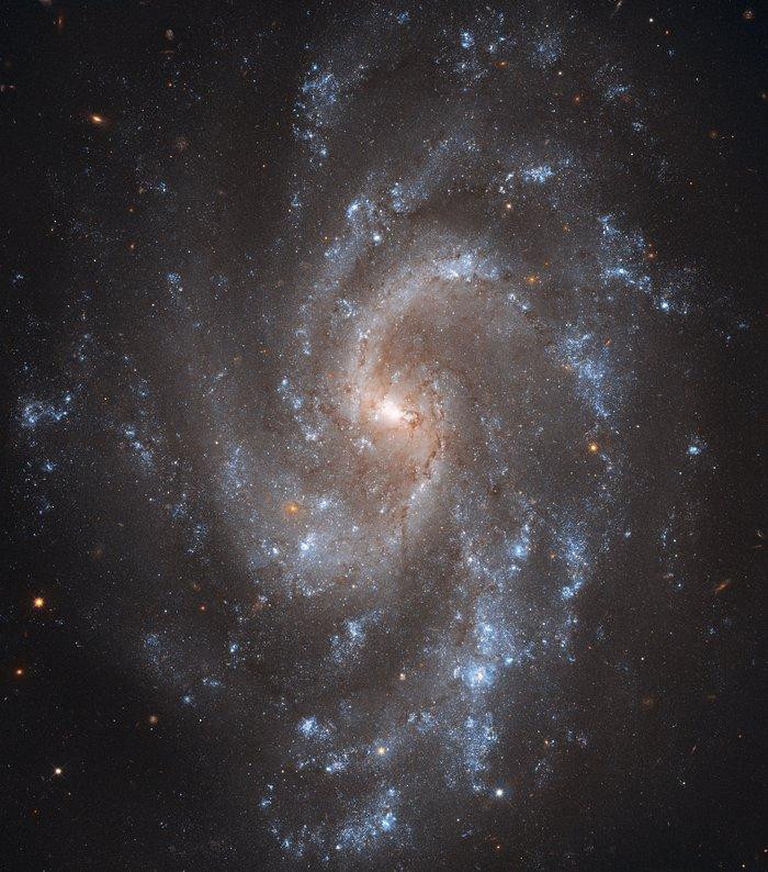Spiral key to Universe's expansion
