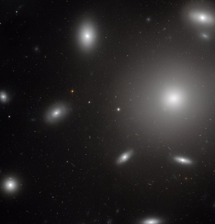 Galaxies in a swarm of star clusters