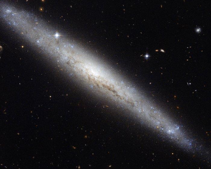 Hubble portrays a dusty spiral galaxy