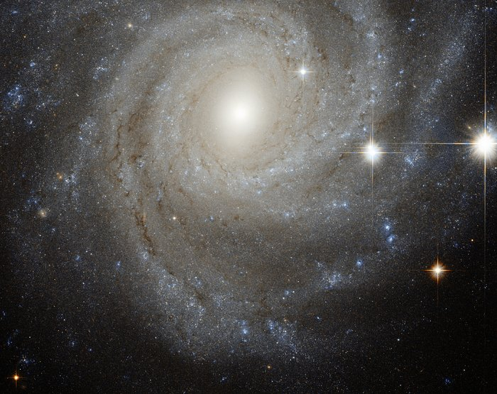 Galaxy in a spin
