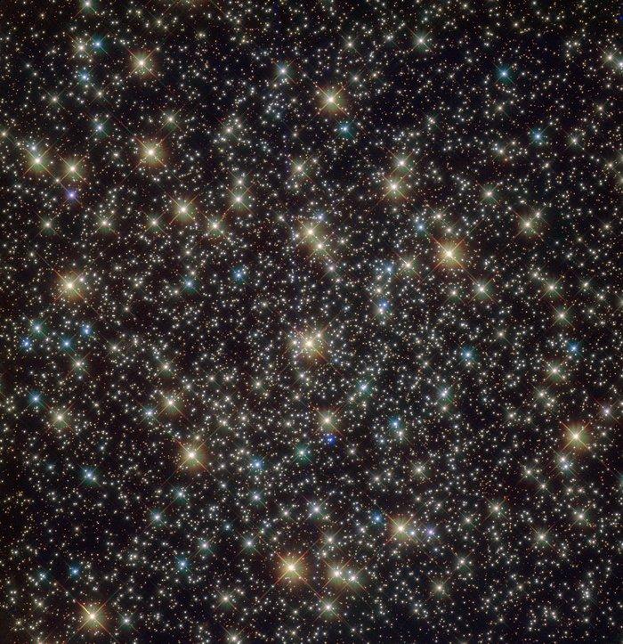 Standout stars