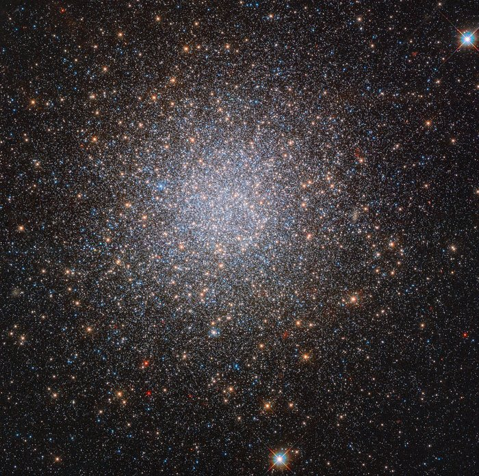 The two mysterious populations of NGC 2419