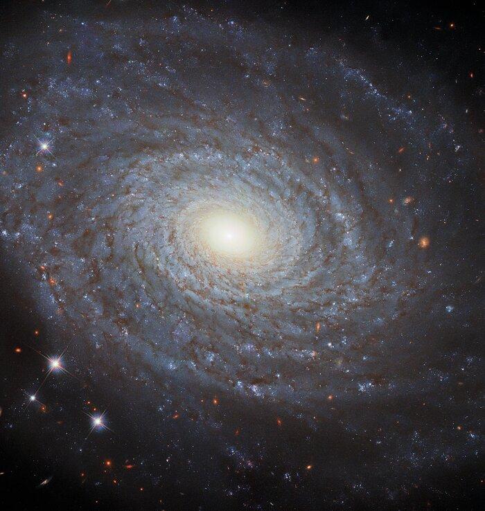 The Eponymous NGC 691