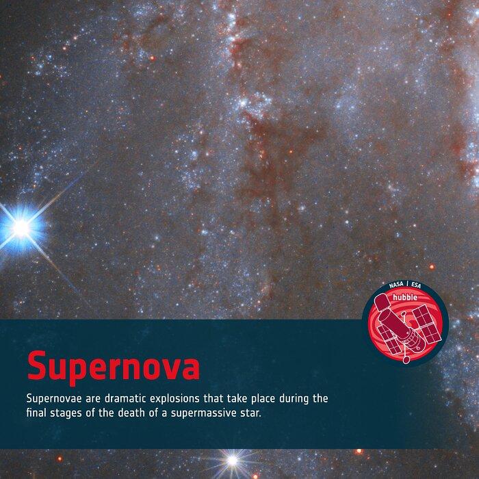 Word Bank: Supernova