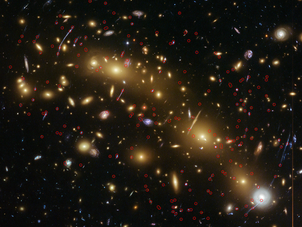 Frequently Asked Questions in Cosmology