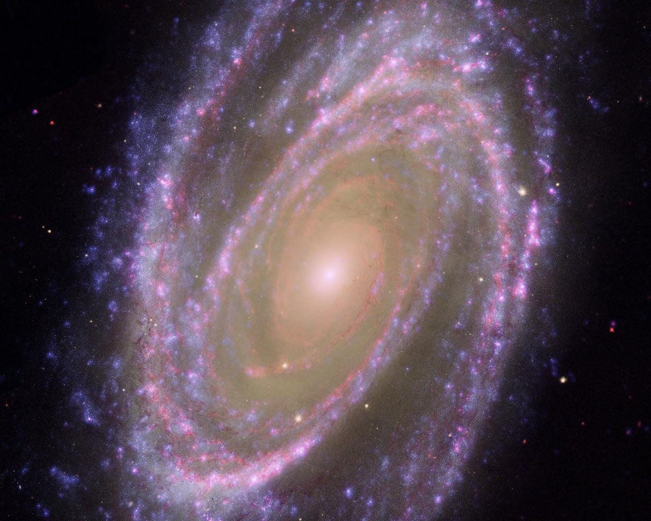 Hubble galex spitzer composite image of m81 esa hubble - Spitzer space telescope wallpaper ...