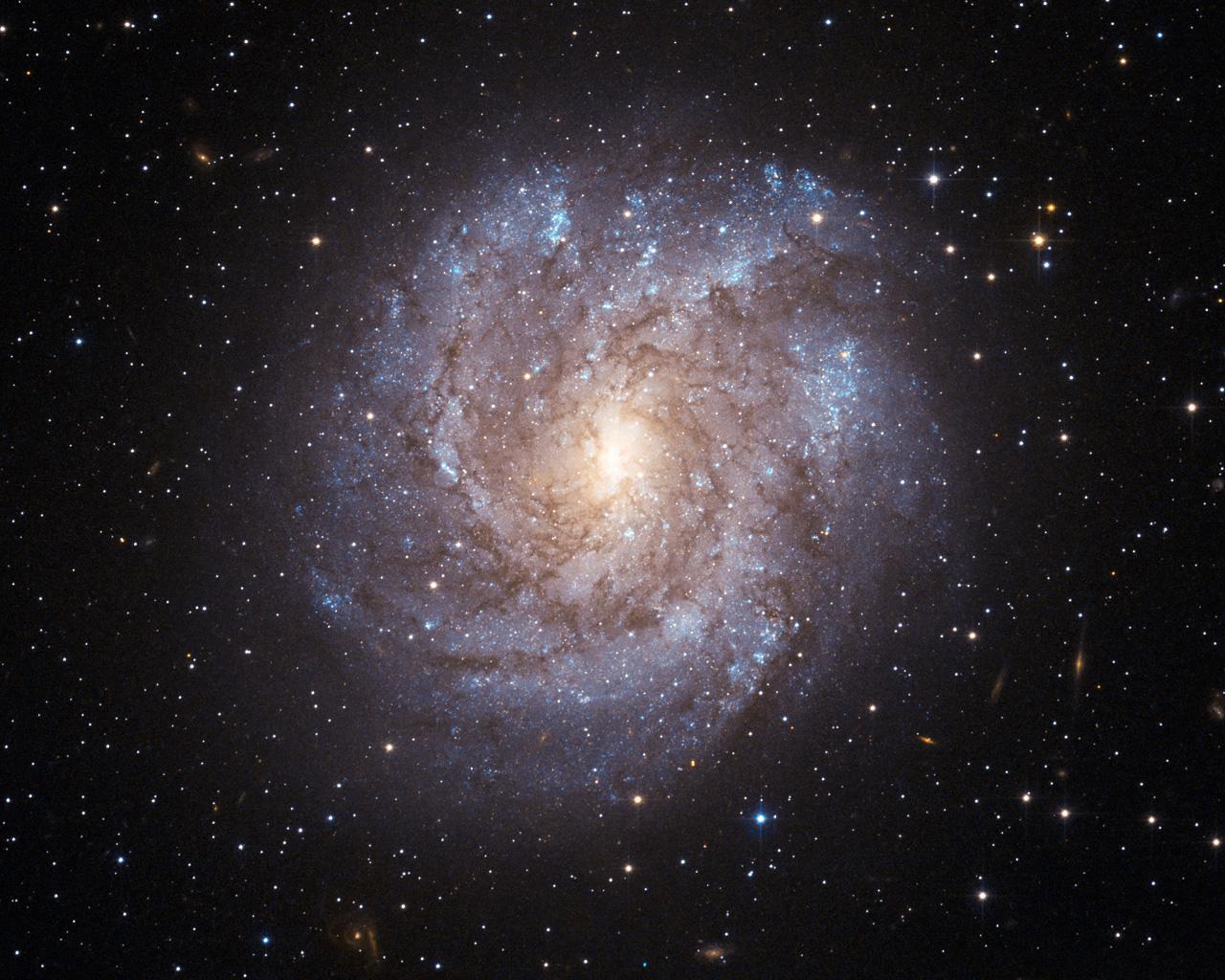 The dusty beauty of NGC 2082 | ESA/Hubble