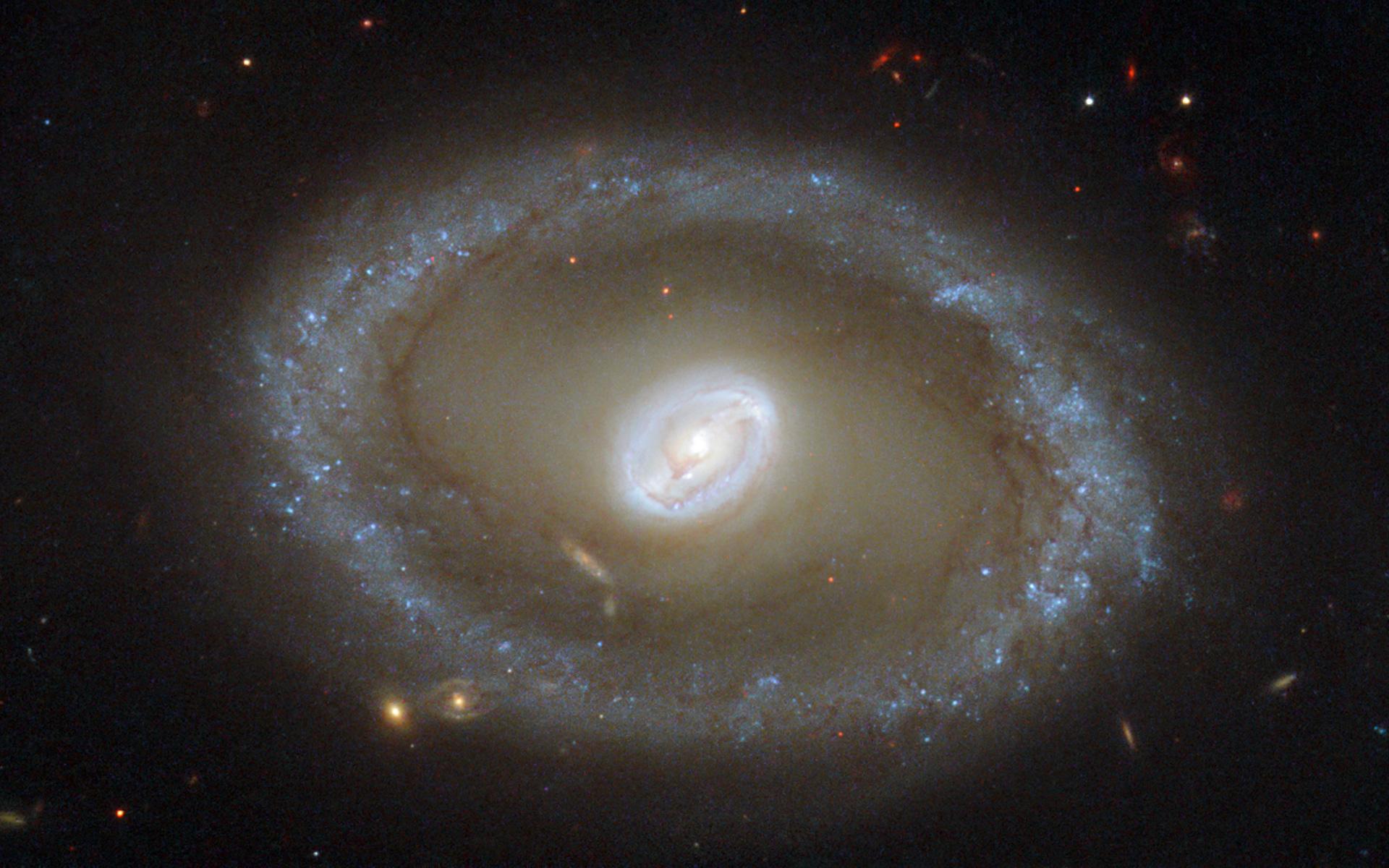 Golden rings of star f...