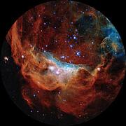 Cosmic Reef for Fulldome