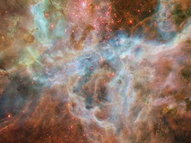 Zooming on the Tarantula Nebula