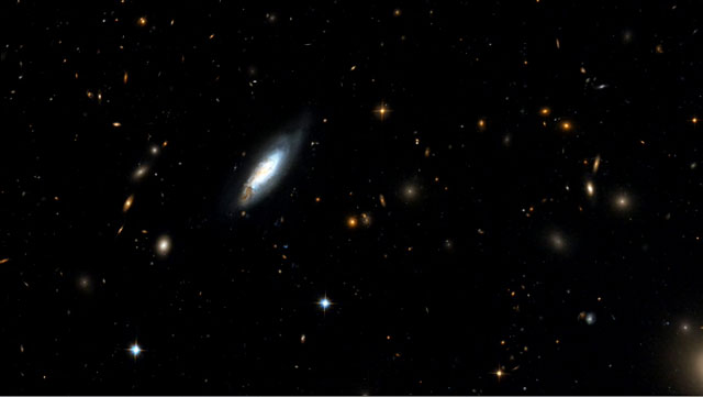 Panning on the Coma Cluster
