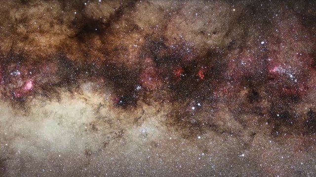Zooming in on the Quintuplet Cluster